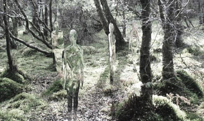 siluetas bosque por R. Mulholland